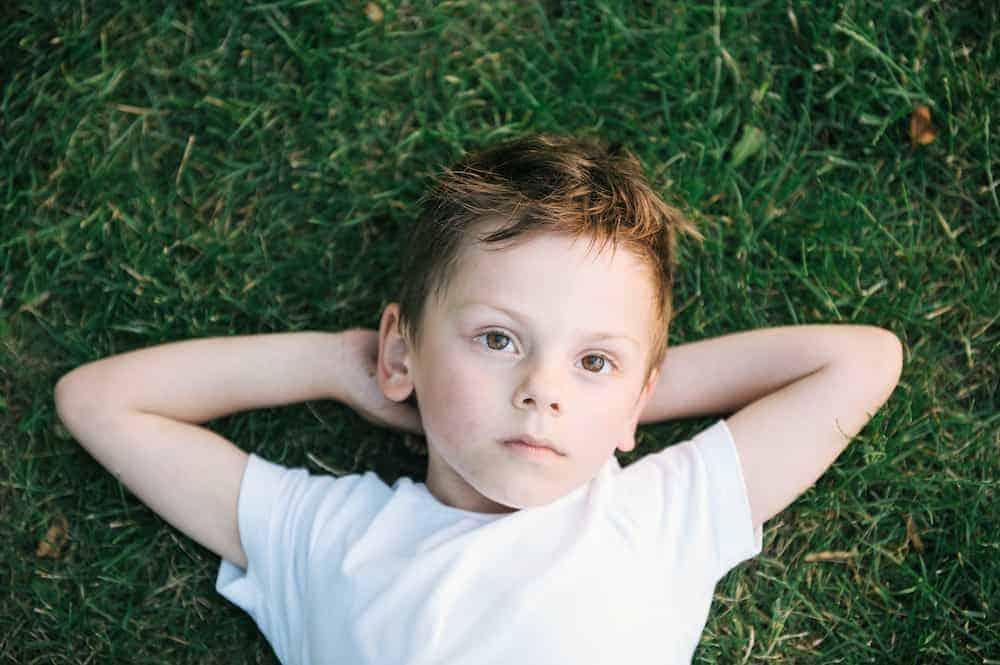 Lebenszahl 2 Kinder: Sensibler Junge in Wiese